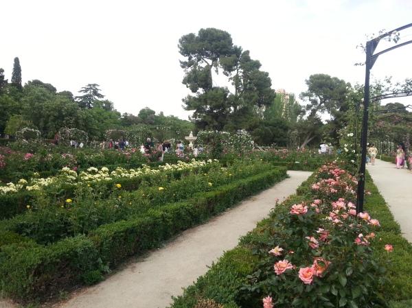 jardin fleuri parc retiro